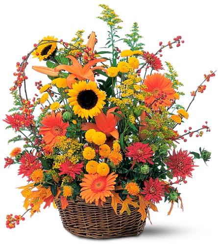 Majestic Fall Quality Flowers Fort Smith Ar