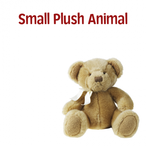 Small Plush Animal